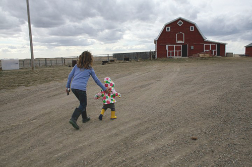 Mother chases her daughter toward the red barn