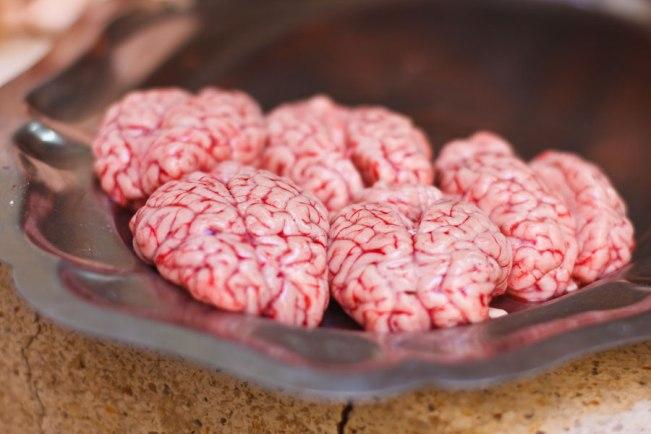 lamb-brain