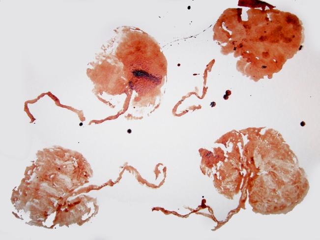 placenta-art