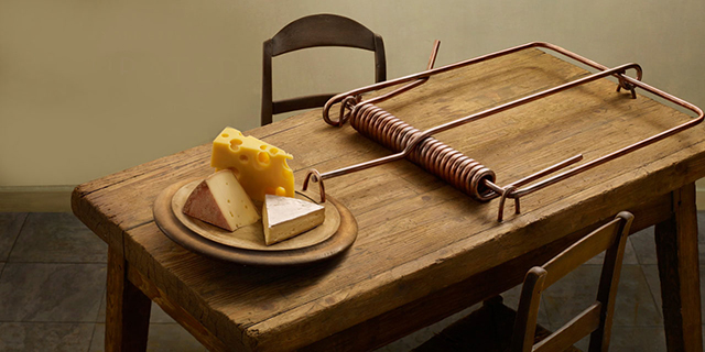 Mouse-Trap-Cheese