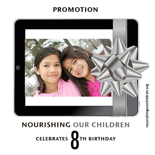 Anniversary Banner Promotion WordPress