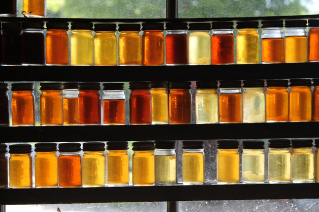 colours-of-maple-syrup