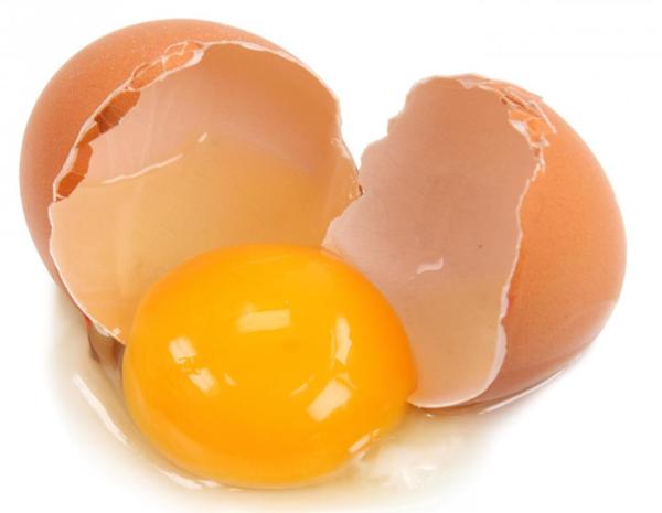 orange-egg