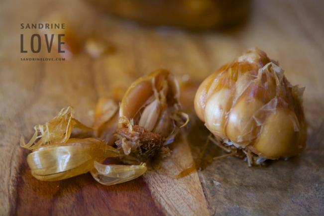 Garlic 41