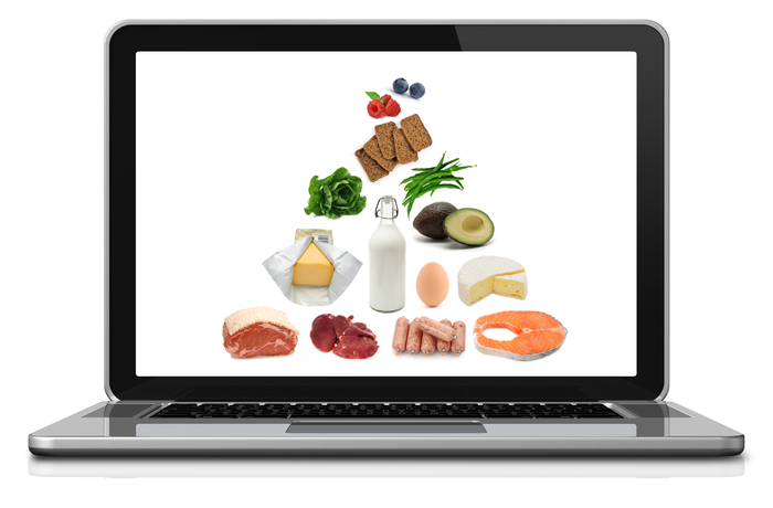food-pyramid-laptop