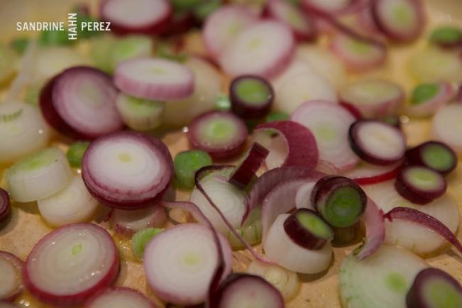 Zucchini Soup 8