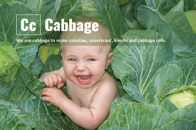 Real-Food-Alphabet-C-Cabbage-Final.png